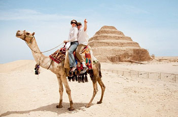 camel in from of step pyramids pyramid of djoser cairo egypt